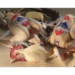 Poulet de Bresse effilé Label Rouge